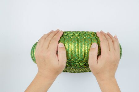 formalize: Thai silk Pumkin Pillow and hand on white background