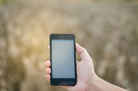 touch screen phone: Mobile touch screen phone  natural background Stock Photo