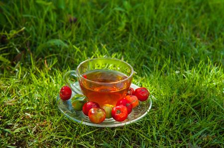 prophylactic: Cherry hot herbal tea. Stock Photo
