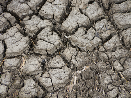 waterless: ground waterless