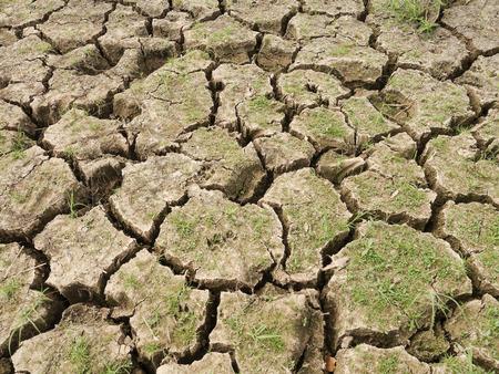 waterless: Ground Waterless Rainless dry Land
