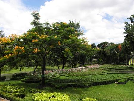 sylvan: flower garden and clear sky in summer Stock Photo