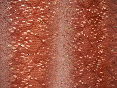 velvety: full frame orange fabric, fabric background Stock Photo
