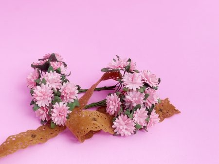 Still life, Pink Daisy and Brown Lace on Pink Background