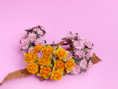 Pink Daisy and Yellow Roses on Pink background
