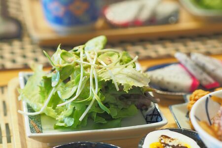 Vegetable Salad include frillice iceberg lettuce and sunflower sprout with Japanese Sesame Dressing - Breakfast set Japanese style Archivio Fotografico