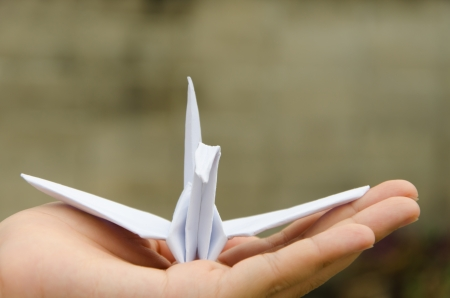 origami is the Japanese word that used to call paper art This craft of white crane shows freedom,independence,liberty,peaceful,friendship and meaning of abtracts  photo