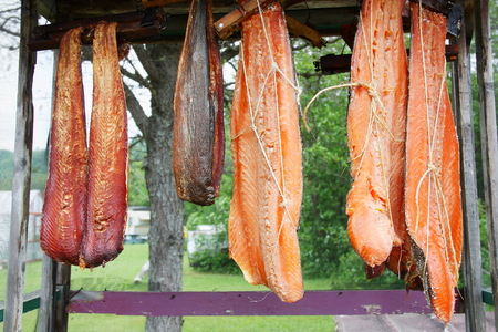 red salmon: Canadian red salmon strips hung on to smoke in outdoor racks