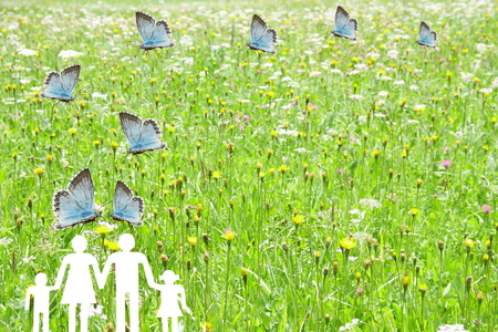 Blue butterflies flying on a green grass meadow background welfare concept