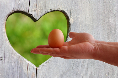 Egg in hand on wooden background with green heart