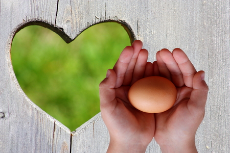 Egg in hands on wooden background with green heart