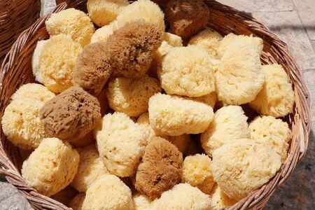 Brown natural greek sea sponge