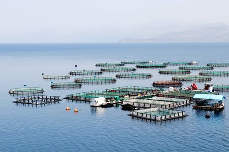 Fish farm with cages floating in the greek sea 写真素材