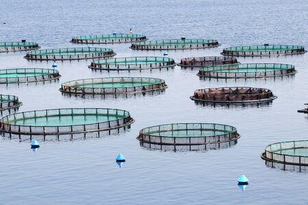 Piscifactoría con jaulas flotando en el mar griego.