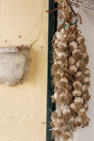 White Garlic Heads at a market stall
