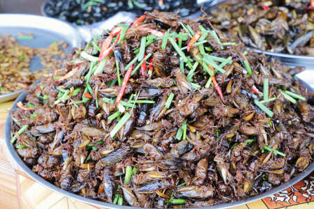 Plate of cooked insects sold in a Cambogian street market