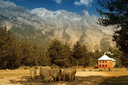 Prokletije bergen, weergave van Thethi dorp, Albanië Stockfoto