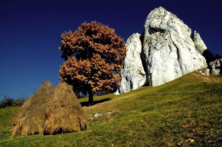 Meadow with haystacks and white rocks Stock Photo - 7901555