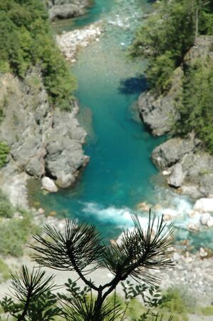 tara: Tara river in Tara canyon, second largest canyon in the world, Montenegro.