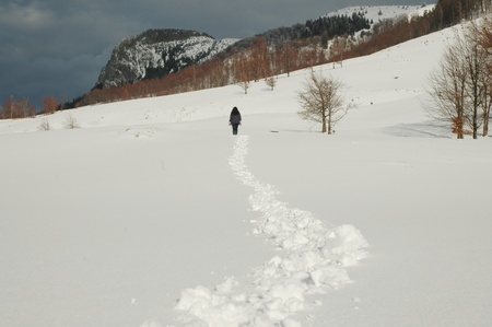 Winter mountains with a lonely trekker, Creasta Cocosului, Romania Stock Photo - 11930117