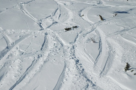 Snow background with ski and snowboard tracks Stock Photo - 12454492