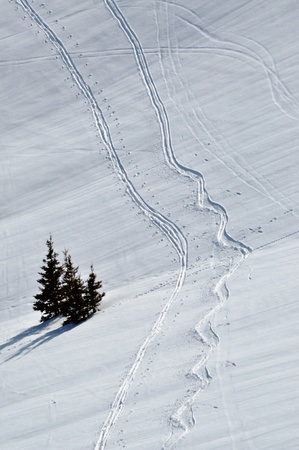 Snow background with ski and snowboard tracks in the Austrian Alps Stock Photo - 12850347