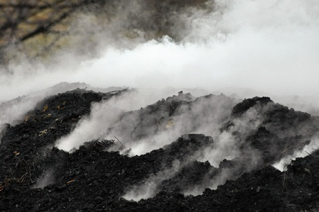 holzbriketts: Meiler brennt in der freien Natur, Rum�nien