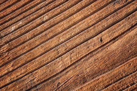 Dry wood timber natural background photo