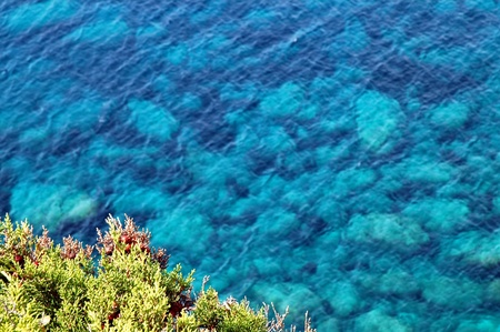 Beautiful clear, turquoise sea water, ideal for background Stock Photo - 14049124