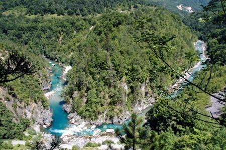 the deepest: El hermoso Ca��n de Tara, el segundo ca��n m�s profundo del mundo en Montenegro Foto de archivo