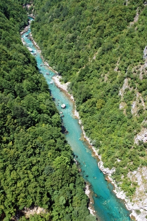 tara: The beautiful canyon of Tara, the second deepest canyon in the world in Montenegro