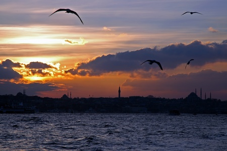 Beautiful sunset and flying birds over Bosphorus, Istanbul, Turkey photo