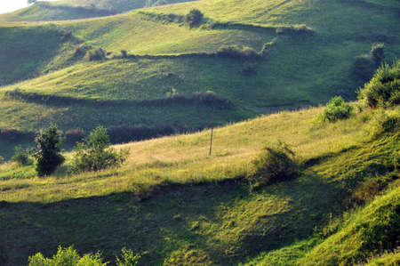 Green hills in late afternoon lights photo
