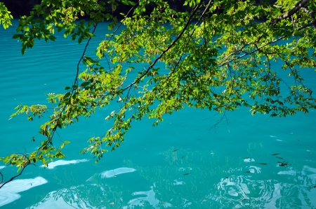 Beautiful turquoise lake in Plitvice National Park, Croatia photo