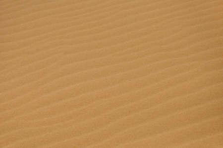 Sandy desert in Mui Ne, Vietnam  photo