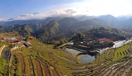 Panorama with terraced rice fields in Sapa, Vietnam