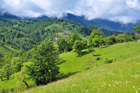 Vibrant green hills and mountain photo