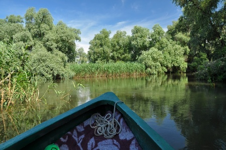 danubian: Travelling with a boat on a water channel in the Danube delta, Romania