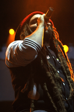 rastafari: CLUJ-NAPOCA - JULY 18  Artist Alborosie from Jamaica performs live on the stage at the Peninsula   Felsziget Music Festival  On July 18, 2013 in Cluj Napoca, Romania  Editorial