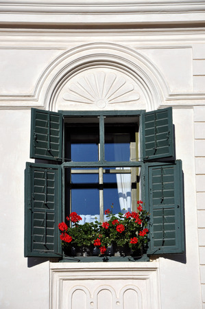 Whitewashed house with green shutters and red geranium flowers photo
