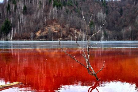 greenpeace: Water pollution of a copper mine exploitation