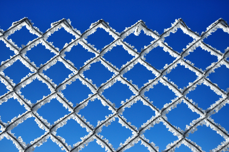 Winter background with a lattice covered by ice crystals photo