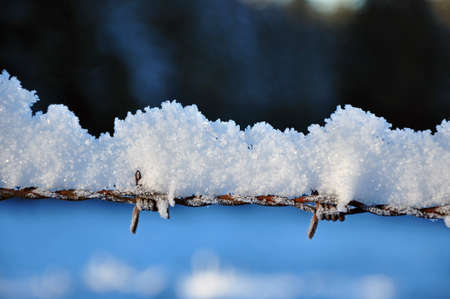Metallic fence in winter with snow and ice crystals on top photo