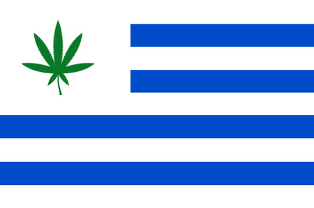 Flag of Uruguay with cannabis leaf  Uruguay becomes first country to legalize marijuana trade photo