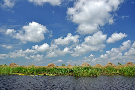 danubian: Beautiful blue sky with white clouds and river  Danube delta, Romania  Stock Photo