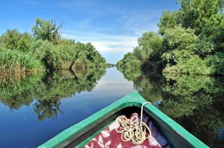 Waterkanaal in de Donau-delta met moerasvegetatie en ondergelopen bos