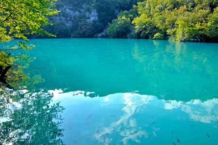 Emerald lake in deep forest, Plitvice, Croatia photo