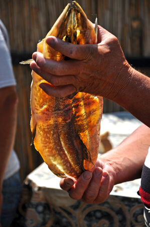 pickerel: Hands holding a dried and smoked pike fish