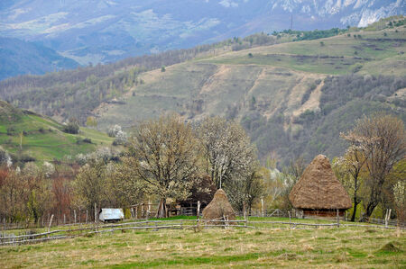 Traditional Romanian rural house with hay roof  Transylvania photo