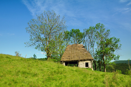 Wooden stable with thatched roof photo